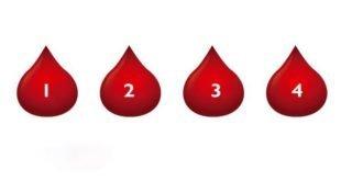Что ваша группа крови может сказать о вашем характере?