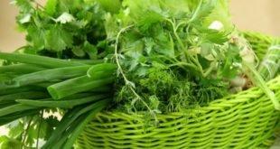 Как хранить свежую зелень дома: главные правила