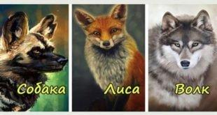 Тест: Выберите животное и узнайте, что о вас может рассказать ваш выбор!