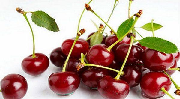Польза вишни и черешни: летнее решение проблем здоровья и старения