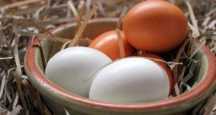 В чем разница между коричневыми и белыми яйцами